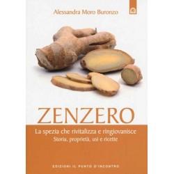 Libro Zenzero