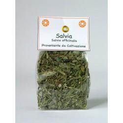 Salvia 15g